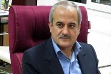 تصویب 55 طرح اشتغالزایی روستایی کردستان برای دریافت تسهیلات