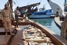 کشتی صیادی با 8 تن ماهی در جاسک توقیف شد