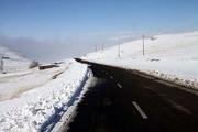 همه جاده های زنجان باز است