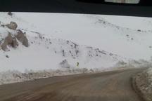 جاده برف گیر گردنه بیژن دنا برای ادامه عملیات امدادی بازگشایی شد