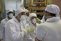 رییس سازمان انرژی اتمی از نیروگاه بوشهر بازدید کرد