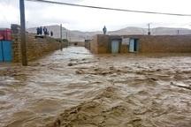 36 نفر در بارندگی های اخیر از مرگ حتمی نجات یافتند