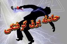 مرگ مرد 74 ساله به دلیل برق گرفتگی در روستای حومه نوشهر