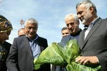 افتتاح چند طرح کشاورزی و دامپروردی در خراسان شمالی
