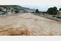 سیلاب وارد منازل در روستاهای شهرستان پلدختر شد