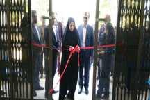 نمایشگاه هنرهای تجسمی هنرمندان بوشهری افتتاح شد