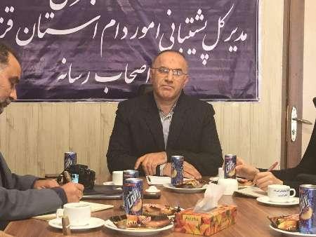 595 تن مرغ منجمد بین مراکز عرضه در استان قزوین توزیع شد