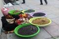 گرد فقر بر چهره خیابانهای پایتخت طبیعت ایران زمین + تصاویر