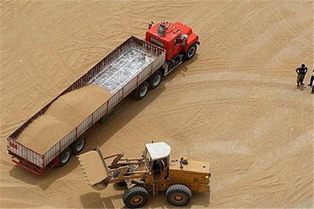 امسال برداشت گندم به 460 هزار تن میرسد