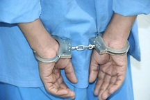 چهار متخلف در محوطه باستانی آران و بیدگل دستگیر شدند
