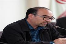 پیگیری حقوقی و قضایی قطع 19 اصله درخت در شهرک رازی مشهد
