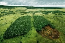آسیب های جدی به منابع طبیعی و محیط زیست ازسوی عامل انسانی واردمی شود