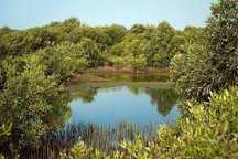 طرح مدیریت پسماند در پارک ملی نایبند آغاز شد