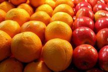 1034 تن میوه تنظیم بازار در قم توزیع شد