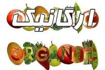 رییس انجمن: در ورود محصولات ارگانیک به سفره های مردم تلاش شود