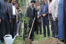 امام جمعه اصفهان: درختانی که به آب کم نیاز دارند، کاشته شوند