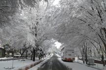 بارش سنگین برف تبریز را سفیدپوش کرد
