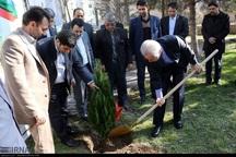 استاندار آذربایجان شرقی همیار طبیعت شد