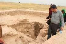 استقبال گردشگران خارجی از محوطه باستانی جندی شاپور دزفول