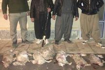 دستگیری شکارچیان خرگوش در ماهنشان