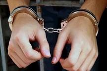 غارتگران طبیعت در بخش طارم سفلی قزوین دستگیر شدند