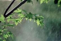 بارش های بهاری پیرانشهر بی سابقه بوده است
