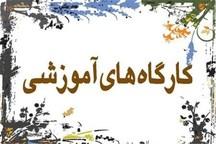 فقدان سواد رسانه ای ،خلایی خشونت زا است