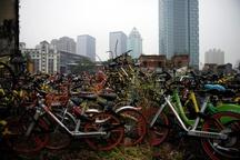 گورستان دوچرخه ها + عکس