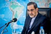 ولایتی: ایران و لبنان برادر و متحد هستند /مذاکراتم با حریری تند و خشن نبود