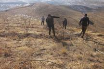 2 هزار مترمربع از اراضی ملی دماوند رفع تصرف شد