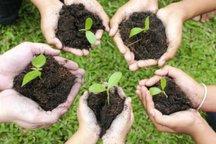 20 هکتار از سایت دفن زباله همدان درختکاری میشود