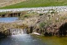 ورودی آب سد گلیل شیروان کاهش پیدا کرد