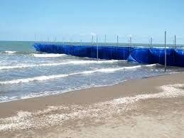 طرح دریا به مجریان شایسته واگذار شود