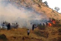 آتش بلای جان 37 هکتار از مراتع و جنگل های کردستان شد