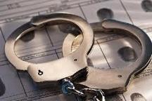 دستگیری سارقان حرفهای لوازم خودرو و کشف 30 فقره سرقت در ماهشهر
