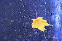 بارش رحمت الهی سبب خوشحالی مردم بهاباد شد