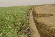 بیش از هزار هکتار آبیاری نوین در شهرستان قاینات در دست اجراست