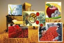 رشد 437 درصدی جذب ماده خام کشاورزی توسط صنایع فارس