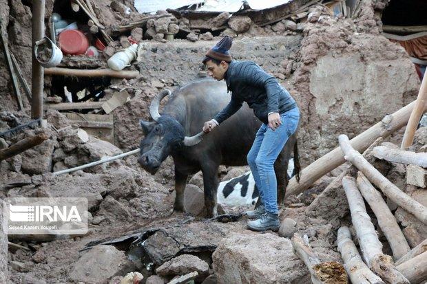 خدمات امداد و نجات و تغذیه اضطراری در مناطق زلزله زده ادامه خواهد داشت