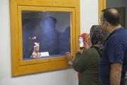 12 شی نفیس در موزه شوش رونمایی شد