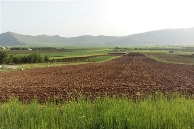 160هکتار از اراضی کشاورزی اردبیل رفع تداخل می شود