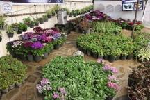 پارک های سنندج میزبان دومین جشنواره تخصصی گل و گیاه می شود