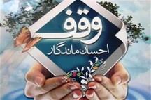 یک قطعه شالیزار برای تامین هزینه حوزه علمیه تالش وقف شد