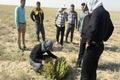154طرح منابع طبیعی دراستان بوشهر در دست اجراست