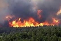 آتش سوزی 15 هکتاری مراتع و درختان جنگلی خرمنه سر طارم