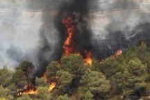 آتش سوزی یکی از مناطق جنگلی لاهیجان مهار شد