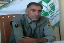 دستگیری 96 شکارچی غیر مجاز در خراسان جنوبی