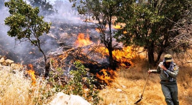 آتش به جان منطقه عشایری لودر ماژین افتاد
