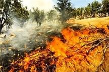 پیگیری اطفاء حریق در جنگلها و مراتع منطقه قارون شهرستان باغملک