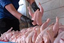 تامین گوشت قرمز راهکاری برای کاهش قیمت مرغ